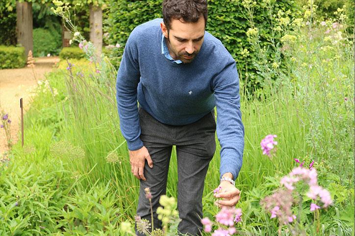 Consulenza Giardini | Garden Coach - Stefano Assogna
