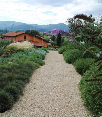 Giardino mediterraneo moderno, San Cesareo | Stefano Assogna - Garden Tutor